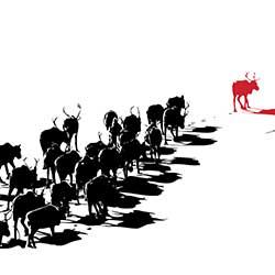 Remissvar Utkast till lagrådsremiss En konsultationsordning i frågor som rör det samiska folket
